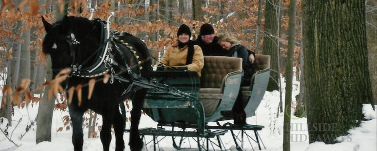 5 Ways To Have Winter Fun in Ohio's Amish Country